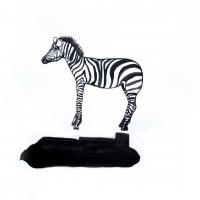 R0013170-zebra1