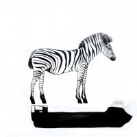 R0013172-zebra2